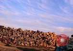 Image of log piles California United States USA, 1967, second 20 stock footage video 65675020971