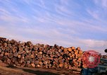 Image of log piles California United States USA, 1967, second 21 stock footage video 65675020971
