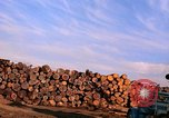 Image of log piles California United States USA, 1967, second 22 stock footage video 65675020971
