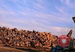 Image of log piles California United States USA, 1967, second 23 stock footage video 65675020971