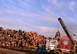 Image of log piles California United States USA, 1967, second 24 stock footage video 65675020971