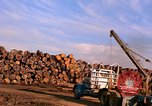 Image of log piles California United States USA, 1967, second 29 stock footage video 65675020971