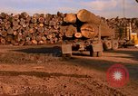 Image of log piles California United States USA, 1967, second 30 stock footage video 65675020971