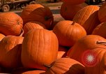 Image of pile of newly picked pumpkins California United States USA, 1967, second 21 stock footage video 65675020973