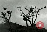 Image of Army Camp of 45th Infantry Division of United States Korea, 1953, second 29 stock footage video 65675021003