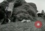 Image of Farming activities United States USA, 1917, second 5 stock footage video 65675021034