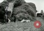Image of Farming activities United States USA, 1917, second 6 stock footage video 65675021034