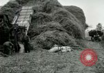 Image of Farming activities United States USA, 1917, second 14 stock footage video 65675021034