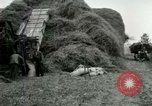 Image of Farming activities United States USA, 1917, second 18 stock footage video 65675021034