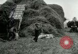 Image of Farming activities United States USA, 1917, second 25 stock footage video 65675021034