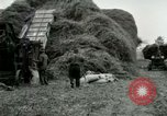 Image of Farming activities United States USA, 1917, second 27 stock footage video 65675021034