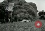 Image of Farming activities United States USA, 1917, second 31 stock footage video 65675021034