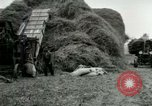 Image of Farming activities United States USA, 1917, second 33 stock footage video 65675021034