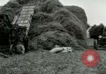 Image of Farming activities United States USA, 1917, second 38 stock footage video 65675021034