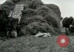 Image of Farming activities United States USA, 1917, second 39 stock footage video 65675021034