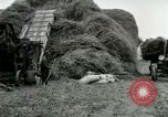 Image of Farming activities United States USA, 1917, second 41 stock footage video 65675021034
