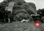 Image of Farming activities United States USA, 1917, second 46 stock footage video 65675021034