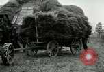 Image of Farming activities United States USA, 1917, second 55 stock footage video 65675021034