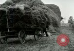 Image of Farming activities United States USA, 1917, second 58 stock footage video 65675021034