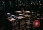 Image of 1st Air Cavalry Division Cambodia, 1970, second 26 stock footage video 65675021066