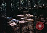 Image of 1st Air Cavalry Division Cambodia, 1970, second 31 stock footage video 65675021066