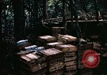 Image of 1st Air Cavalry Division Cambodia, 1970, second 34 stock footage video 65675021066