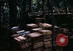 Image of 1st Air Cavalry Division Cambodia, 1970, second 35 stock footage video 65675021066