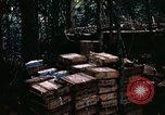 Image of 1st Air Cavalry Division Cambodia, 1970, second 36 stock footage video 65675021066