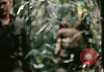 Image of 1st Air Cavalry Division Cambodia, 1970, second 53 stock footage video 65675021066