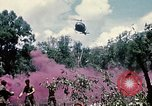 Image of 1st Air Cavalry Division Cambodia, 1970, second 31 stock footage video 65675021070