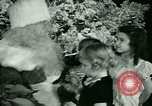 Image of Christmas party New York United States USA, 1947, second 27 stock footage video 65675021113
