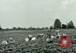 Image of German Prisoner of War Camp in United States United States USA, 1944, second 17 stock footage video 65675021139