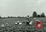 Image of German Prisoner of War Camp in United States United States USA, 1944, second 18 stock footage video 65675021139