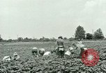 Image of German Prisoner of War Camp in United States United States USA, 1944, second 19 stock footage video 65675021139