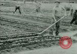 Image of German Prisoners of War United States USA, 1944, second 23 stock footage video 65675021148