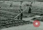 Image of German Prisoners of War United States USA, 1944, second 26 stock footage video 65675021148