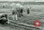Image of German Prisoners of War United States USA, 1944, second 42 stock footage video 65675021148