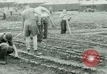 Image of German Prisoners of War United States USA, 1944, second 43 stock footage video 65675021148