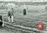 Image of German Prisoners of War United States USA, 1944, second 46 stock footage video 65675021148