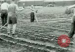 Image of German Prisoners of War United States USA, 1944, second 48 stock footage video 65675021148