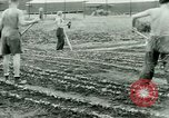 Image of German Prisoners of War United States USA, 1944, second 49 stock footage video 65675021148