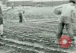 Image of German Prisoners of War United States USA, 1944, second 50 stock footage video 65675021148