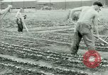 Image of German Prisoners of War United States USA, 1944, second 51 stock footage video 65675021148