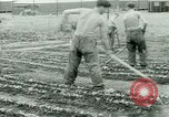 Image of German Prisoners of War United States USA, 1944, second 54 stock footage video 65675021148