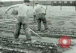Image of German Prisoners of War United States USA, 1944, second 57 stock footage video 65675021148