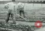 Image of German Prisoners of War United States USA, 1944, second 58 stock footage video 65675021148