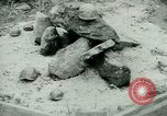 Image of German Prisoners of War United States USA, 1944, second 42 stock footage video 65675021149