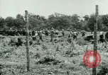 Image of German Prisoners of War United States USA, 1944, second 25 stock footage video 65675021151