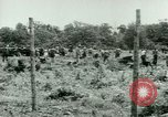 Image of German Prisoners of War United States USA, 1944, second 28 stock footage video 65675021151