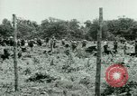 Image of German Prisoners of War United States USA, 1944, second 29 stock footage video 65675021151